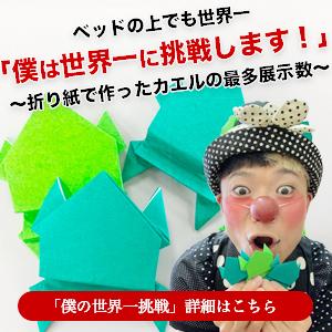 ベッドの上でも世界一「僕は世界一に挑戦します!」~折り紙で作ったカエルの最多展示数~